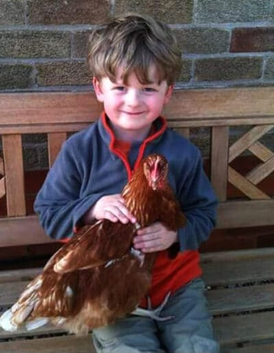 Give A Hen A Home - 1