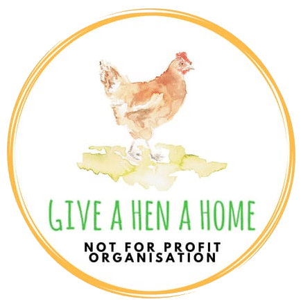 chicken rehoming centre